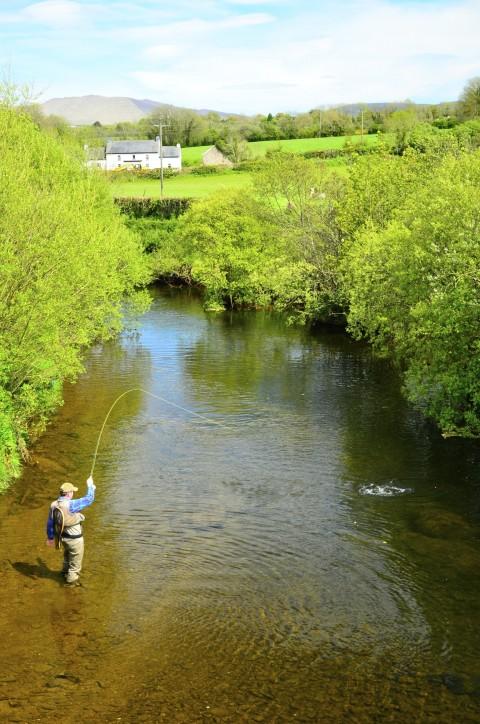 River-Suir-480x724