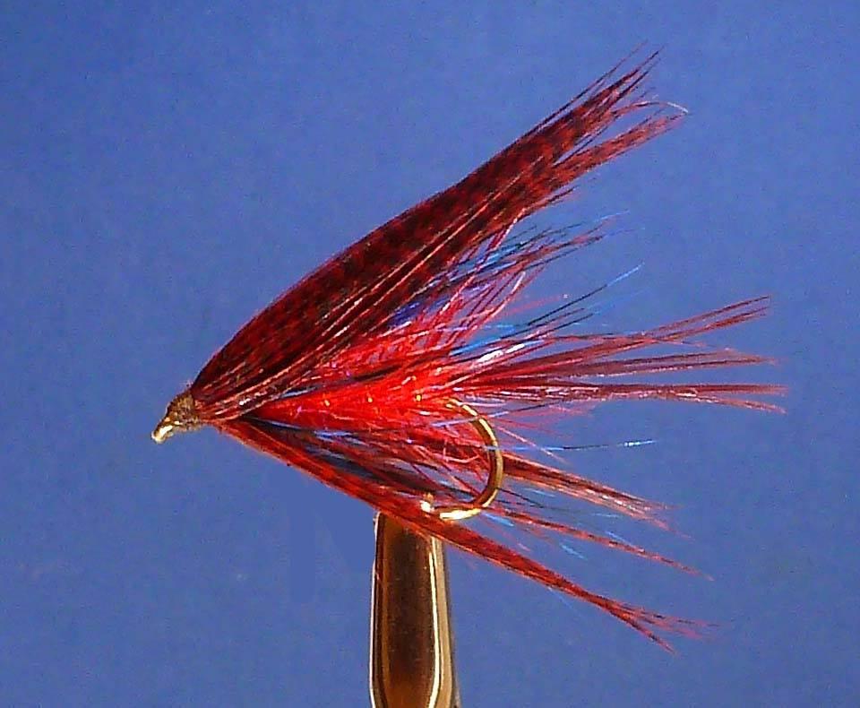 Sheelin-The-Red-Dabbler