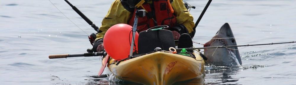 Graham-Smith-Shark-from-a-kayak-Photo-Martin-Maloney
