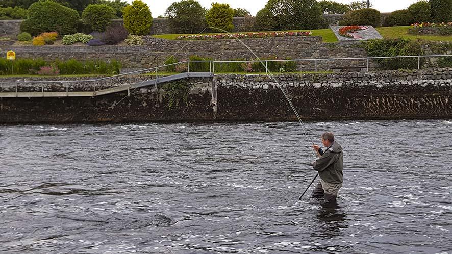 John Moloney col grilse in canna nella Galway Fishery, giugno 2016