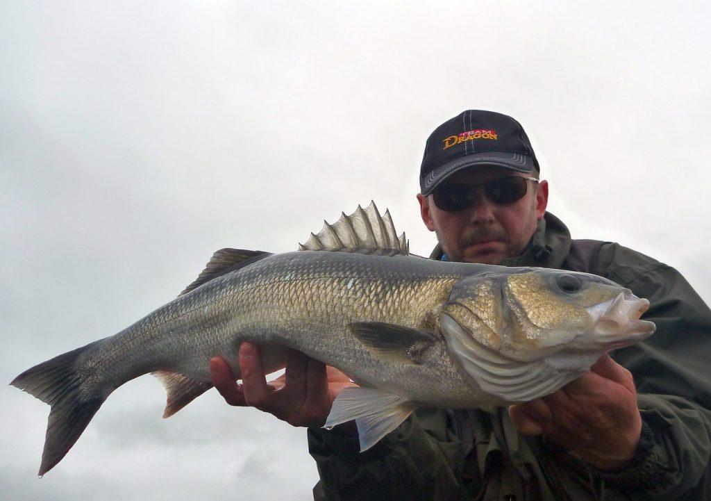 Non male come stagione: quasi 100 spigole e un bel pesce di 76cm