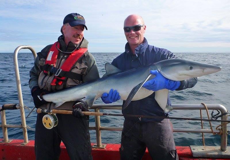 Rudy con un squalo blu