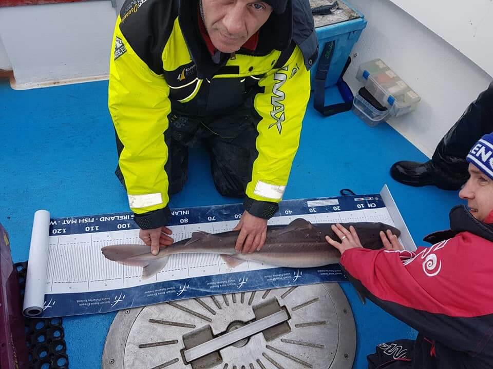 Pesci da 103 cm a 116cm.
