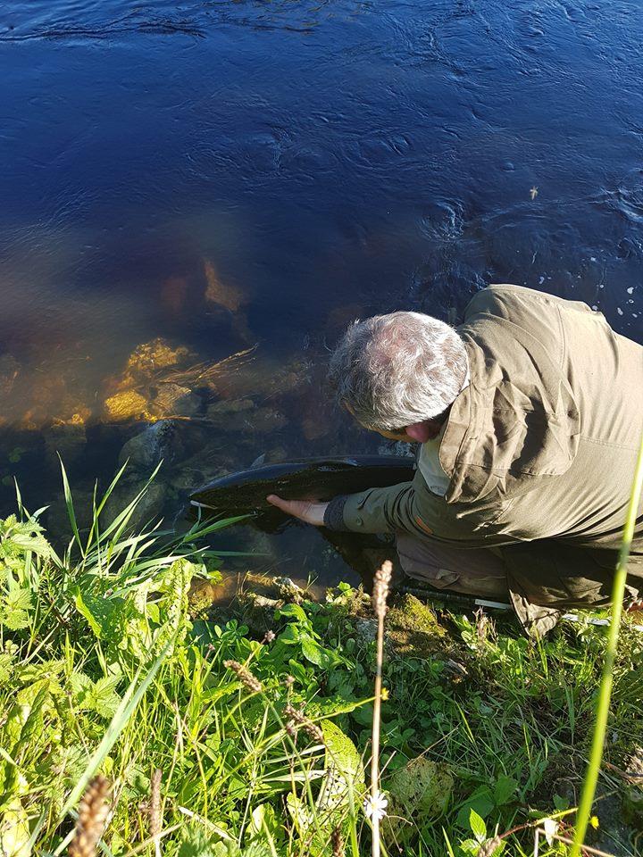 Ballyduff Bridge Fishery