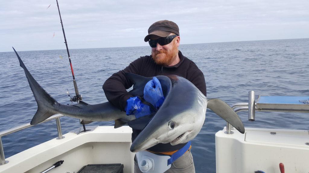 John Dillon col suo Blue Shark