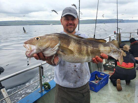 Bel cod in Galway Bay